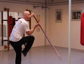 6 1/2 Point Long Pole part 3 - Sifu Edgar Zimmermann